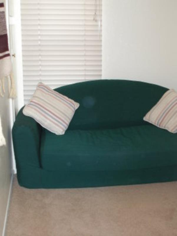 Extra futon sofa sleeper (one of two)